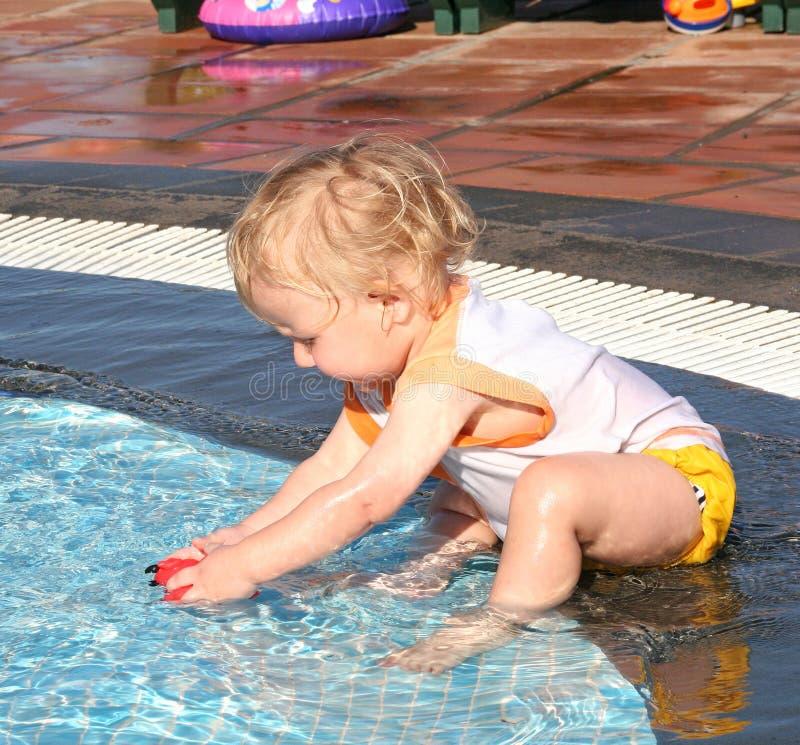 In de pool stock afbeeldingen