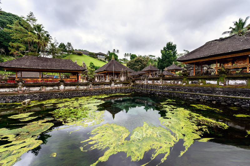 De pool van de heilige lentes in Tirta Empul, Bali stock foto