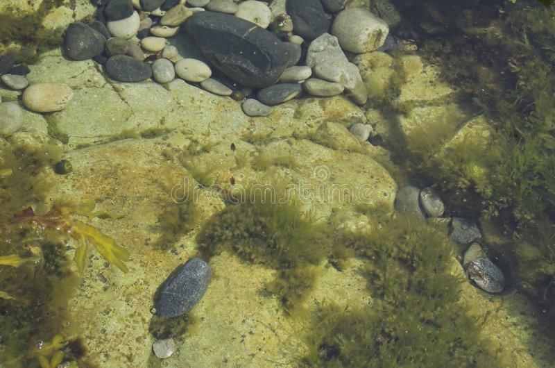 De pool van de rots royalty-vrije stock afbeelding