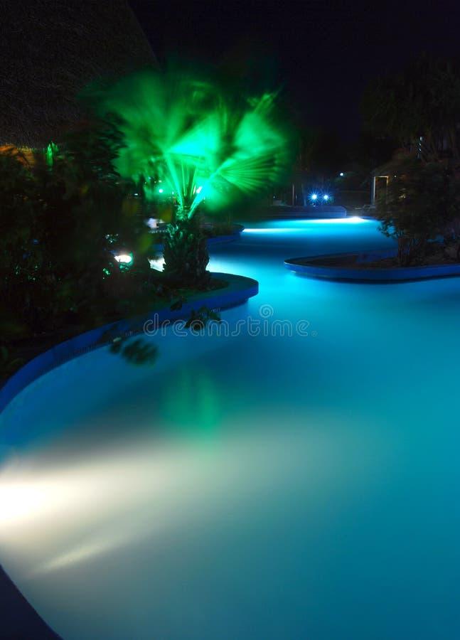 De pool van lit bij nacht met palm stock foto