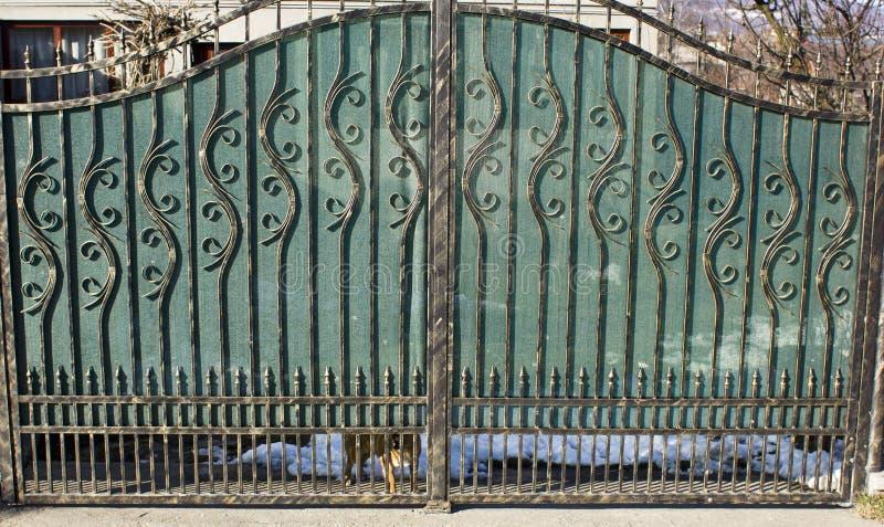 De poort van het smeedijzer royalty-vrije stock afbeeldingen