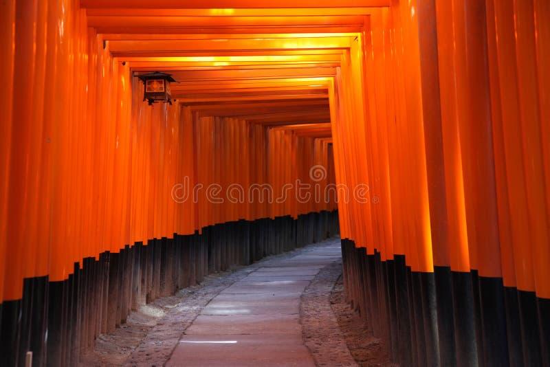 De Poorten van Torii - Kyoto Japan stock fotografie
