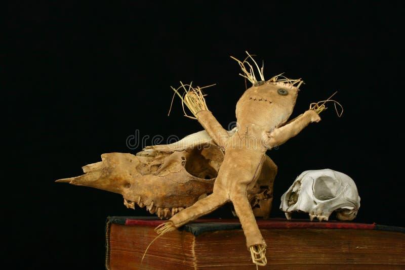 De pop van het voodoo en dierlijke schedels op een oud boek royalty-vrije stock fotografie