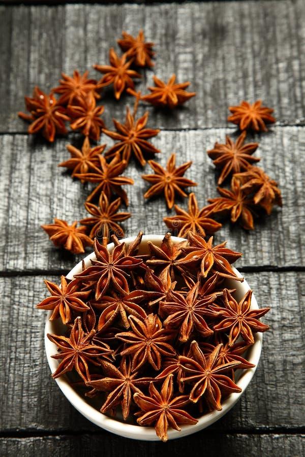 De populaire Indische anijsplant van de kruidster royalty-vrije stock afbeelding