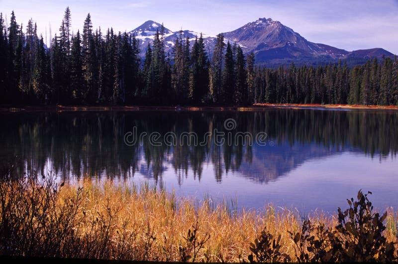 De portretten van Oregon stock afbeeldingen