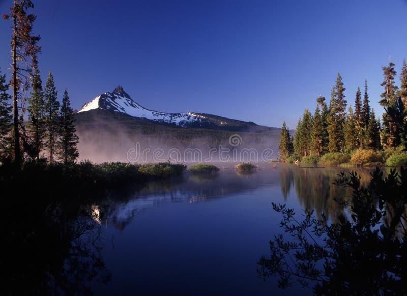 De portretten van Oregon royalty-vrije stock foto's