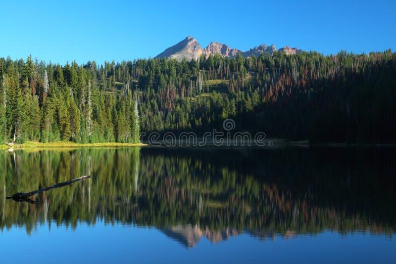 De portretten van Oregon stock afbeelding