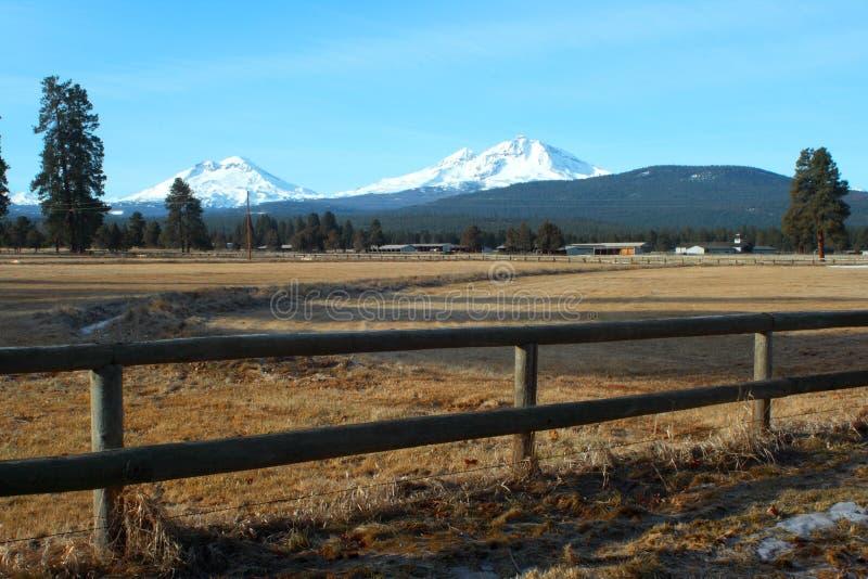 De portretten van Oregon royalty-vrije stock afbeeldingen