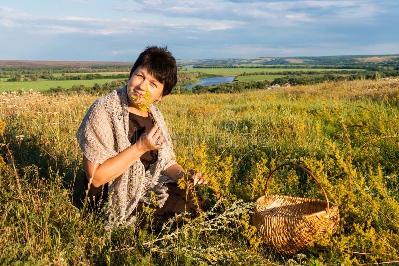 De positieve vijftig éénjarigenvrouw verzamelt gras op weide tegen royalty-vrije stock afbeeldingen