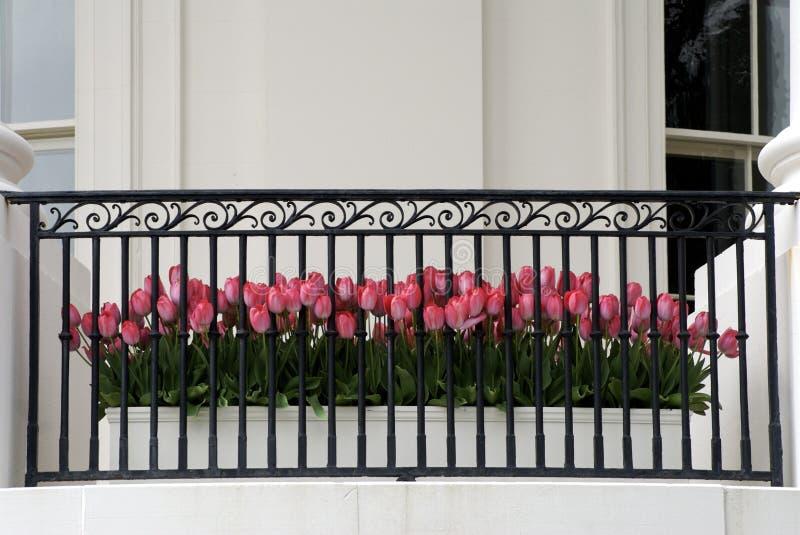 De Pot van de bloem royalty-vrije stock afbeelding
