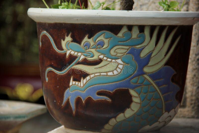De pot van de draakbloem stock fotografie