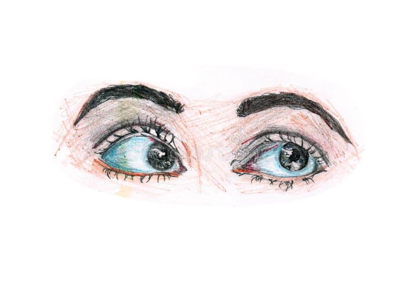 De potloden van de kleur Mooie ogen op een witte achtergrond royalty-vrije illustratie