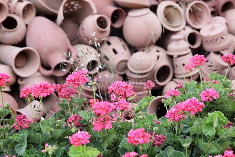 De potten van het terracotta royalty-vrije stock foto's