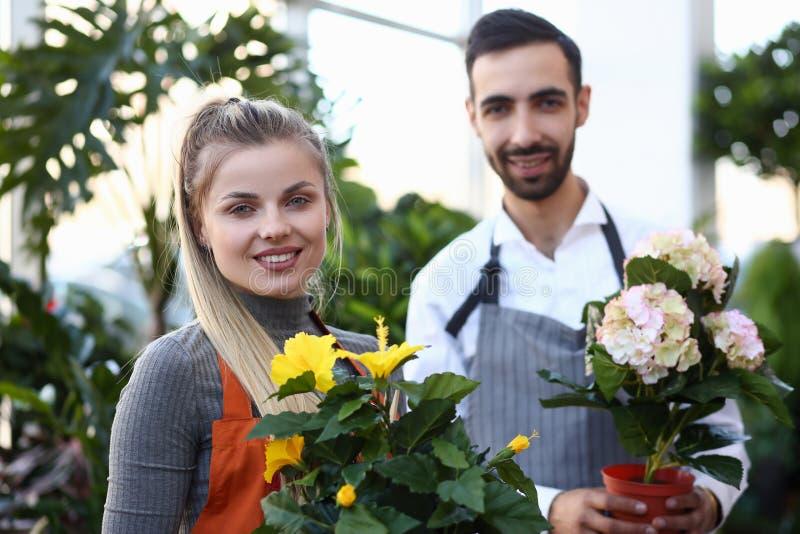 De Pottenportret van twee Bloemistholding domestic flower stock foto's