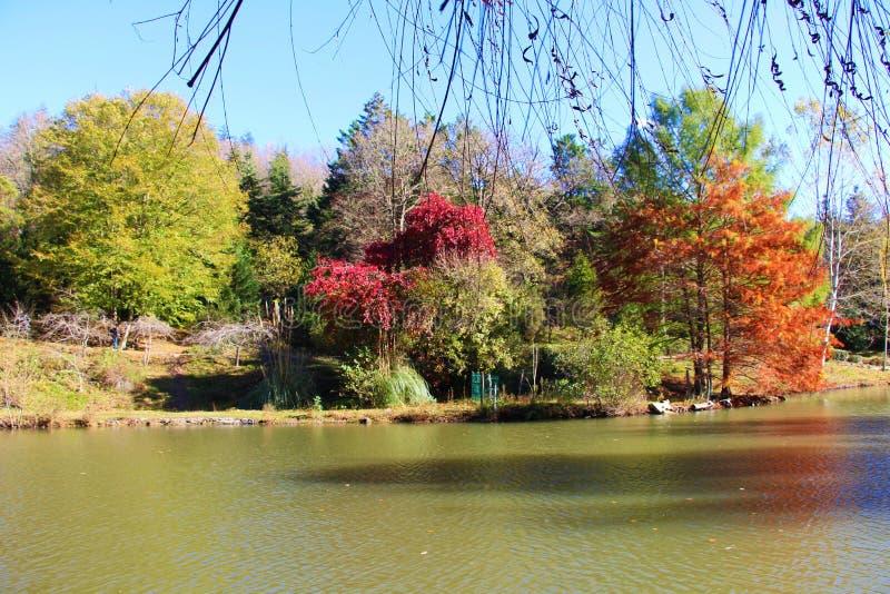 De prachtige kleuren van de herfst royalty-vrije stock fotografie