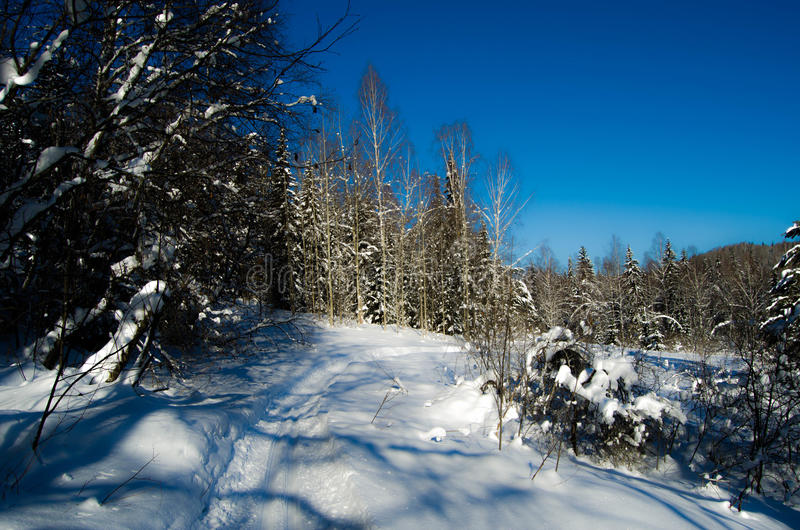 De prachtige winter royalty-vrije stock fotografie