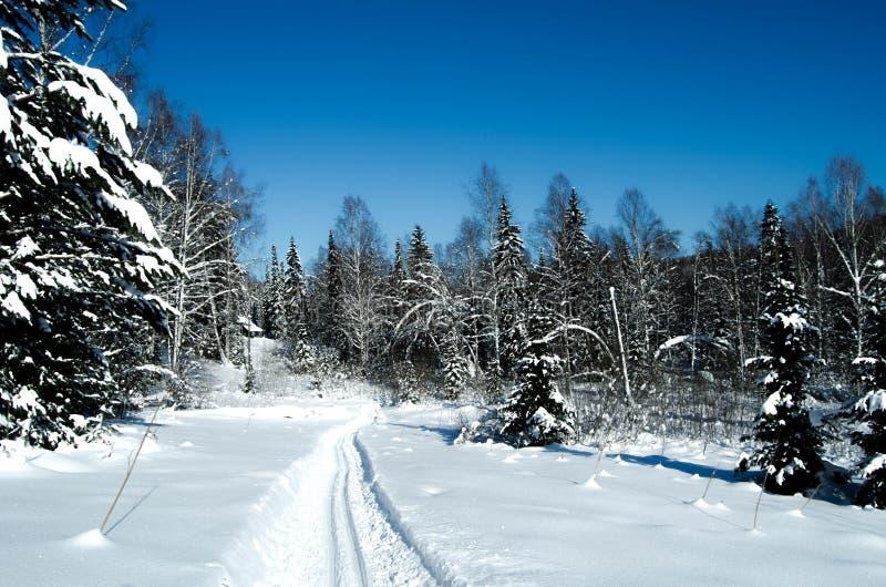 De prachtige winter stock afbeeldingen