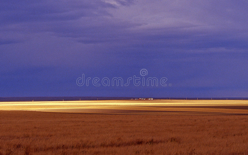 De prairies stock foto
