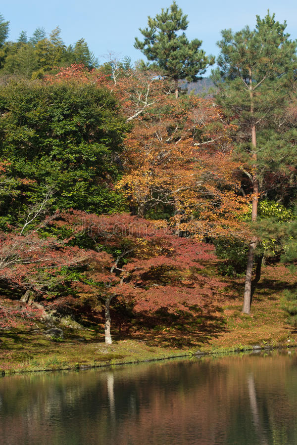 De Prefectuur van Japan, Kinki-Gebied, Kyoto, de Stad van Kyoto, Tenryu -tenryu-ji Tem stock afbeelding