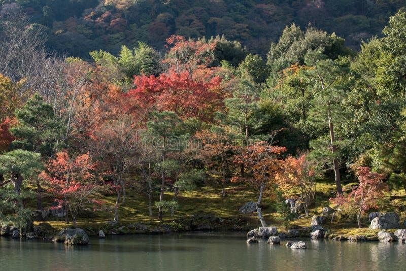 De Prefectuur van Japan, Kinki-Gebied, Kyoto, de Stad van Kyoto, Tenryu -tenryu-ji Tem royalty-vrije stock foto