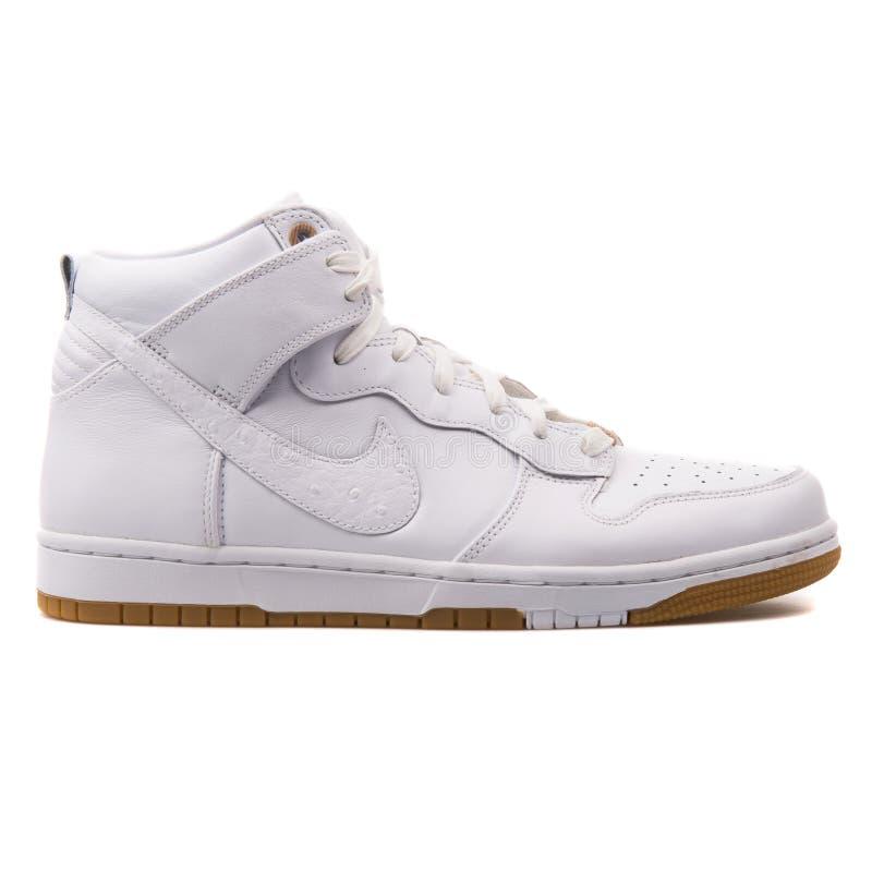 De Premieqs witte tennisschoen van Nike Dunk CMFT stock fotografie