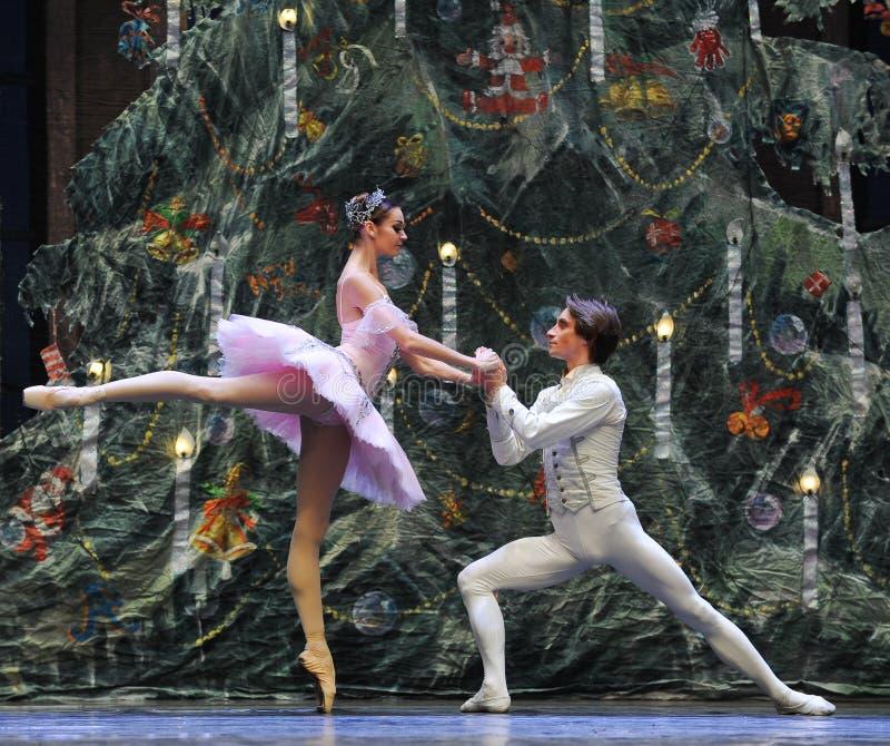 De prins aan het bekentenis-tableau van Clara de 3-Balletnotekraker stock foto