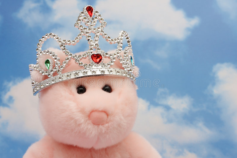 De prinses draagt stock foto