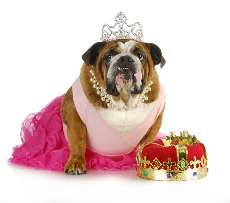 De prinses van Fairytale royalty-vrije stock foto
