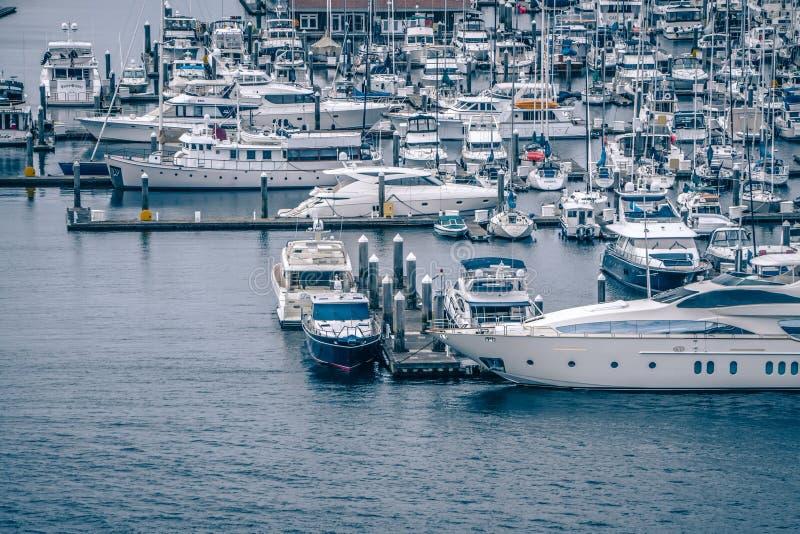 de privé boten en de jachten worden vastgelegd in de haven in Elliott Bay stock fotografie