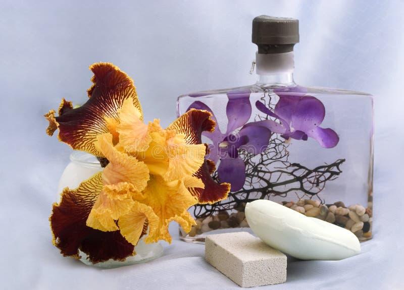 De producten van de lichaamsverzorging met Iris stock foto's