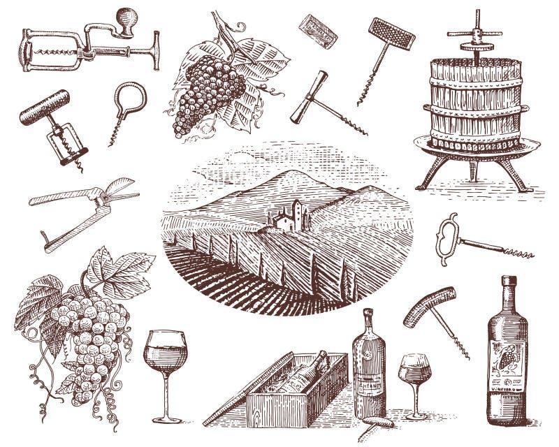 De producten van de wijnoogst, pers, druiven, de glazenflessen van wijngaardenkurketrekkers voor menu's en signage in de bar gegr royalty-vrije illustratie