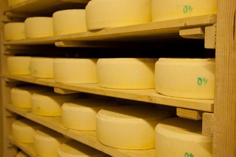 De productie van de kaas stock foto