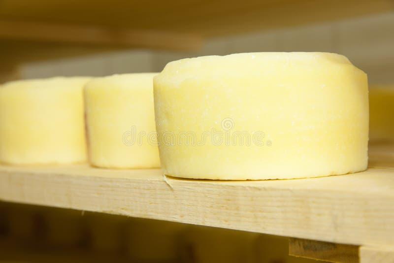 De productie van de kaas stock afbeeldingen