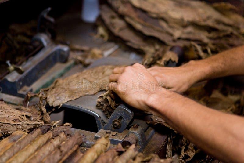 De productie van de tabak stock afbeelding
