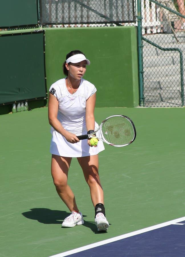 De professionele Speler van het Tennis. stock fotografie