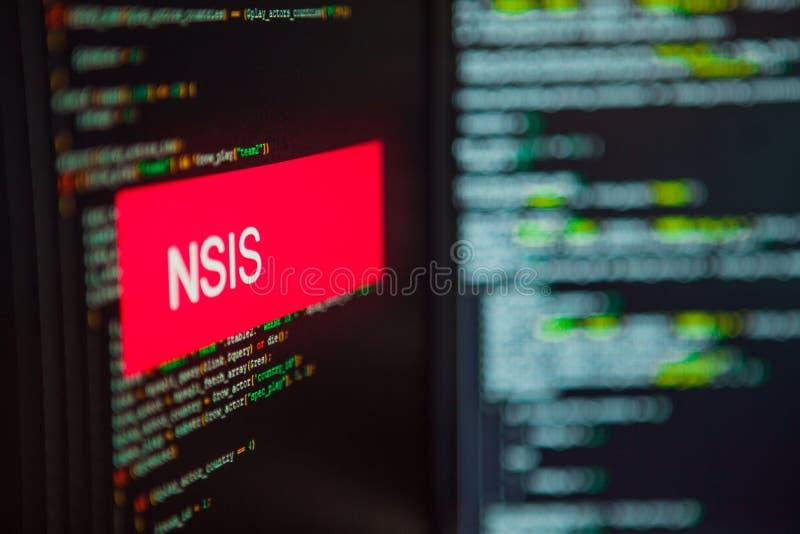 De programmeertaal, Nullsoft Scriptable installeert Systeeminschrijving op de achtergrond van computercode stock fotografie