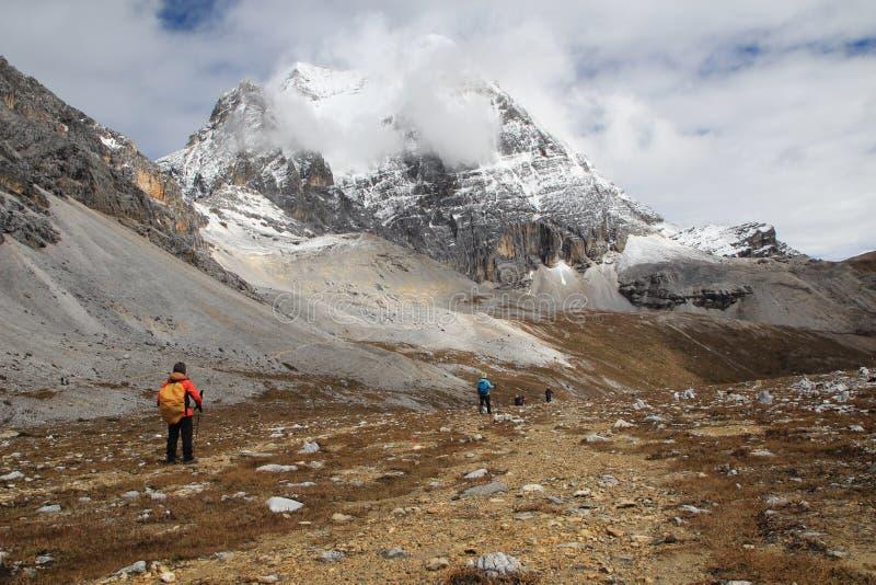 De Provincie van China Sichuan, Muli aan Yading-Wandeling royalty-vrije stock fotografie