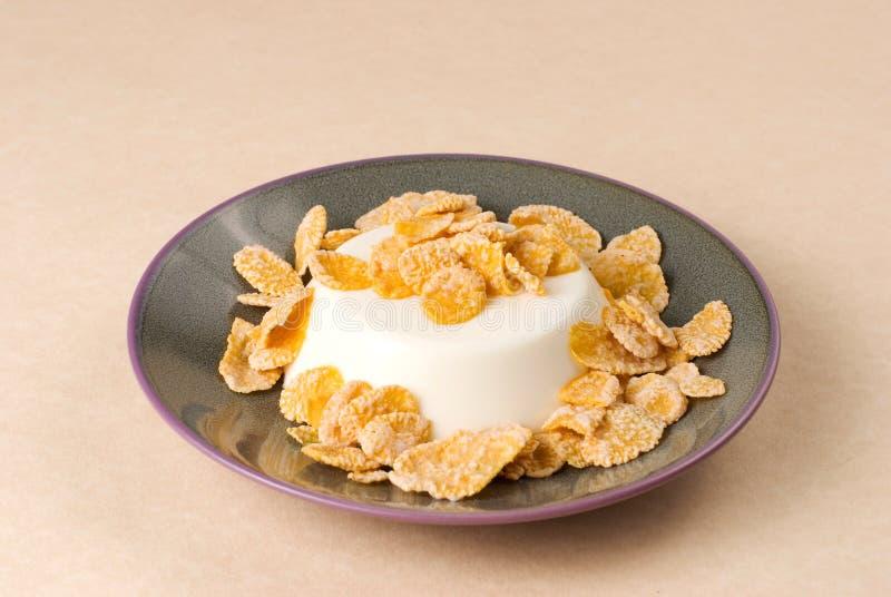 De pudding van de melk met zoete chips stock foto's
