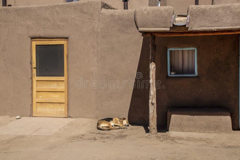 De pueblobouw van de modderadobe in Amerikaans zuidwesten met nieuwe houten deur en hond in slaap outisde - dramatisch schaduwen  stock foto's