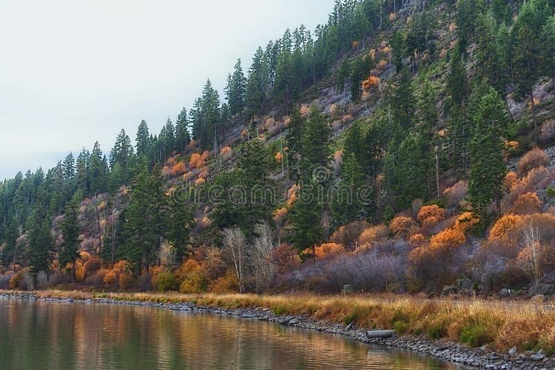 De punthelling van de herfstkleuren langs het Meer van Klamath stock foto
