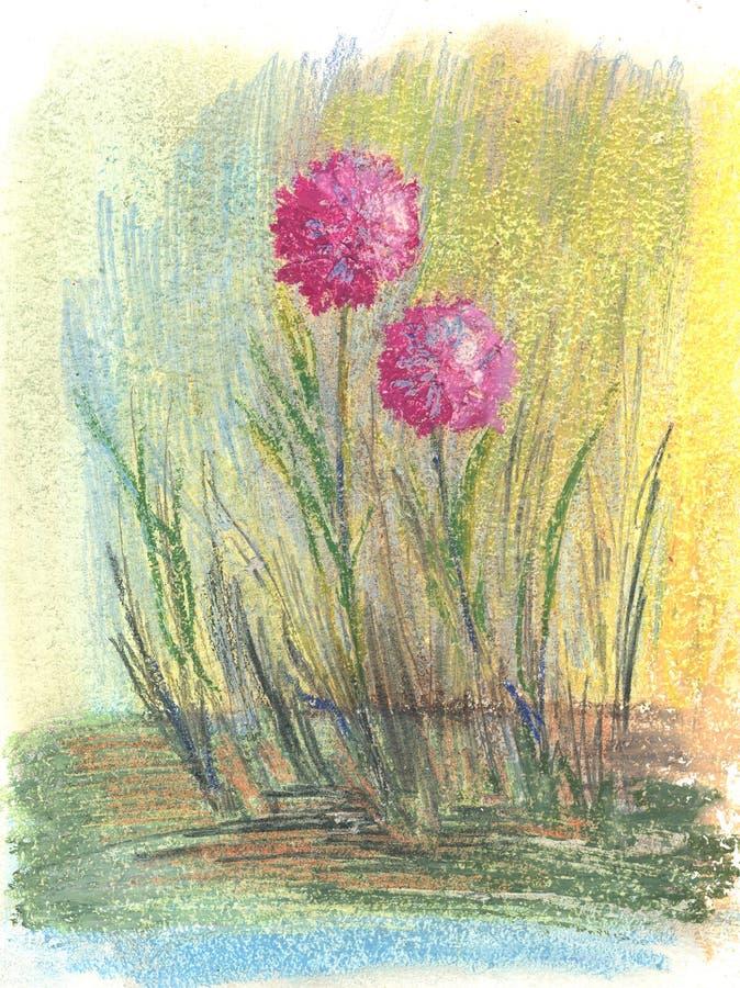 De purpurf?rgade blommorna f?r enkel runda, pastellf?rgad teckning royaltyfria foton