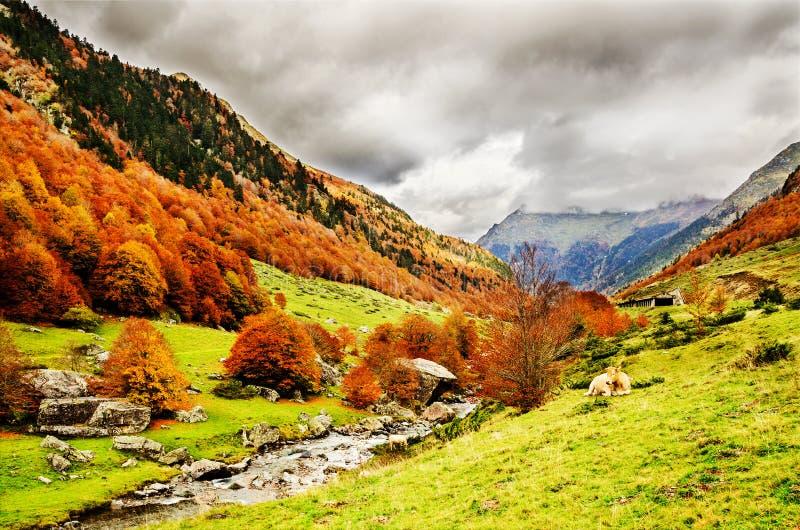 De Pyreneeën Atlantiques stock foto