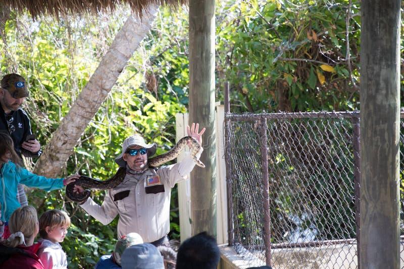 De python toont in Everglades Safari Park royalty-vrije stock afbeeldingen