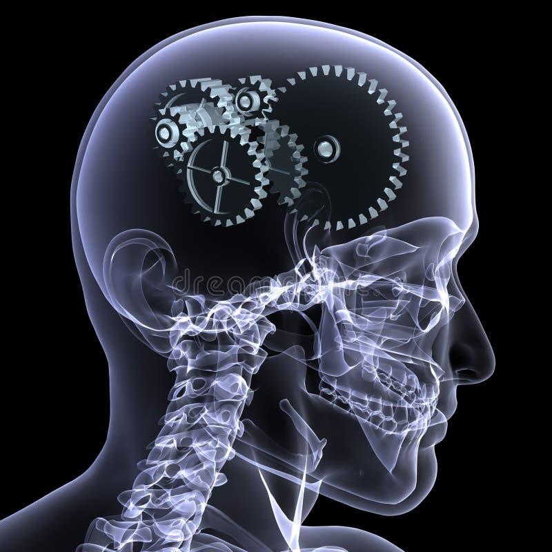 De Röntgenstraal van het skelet - Wielen een Draai vector illustratie