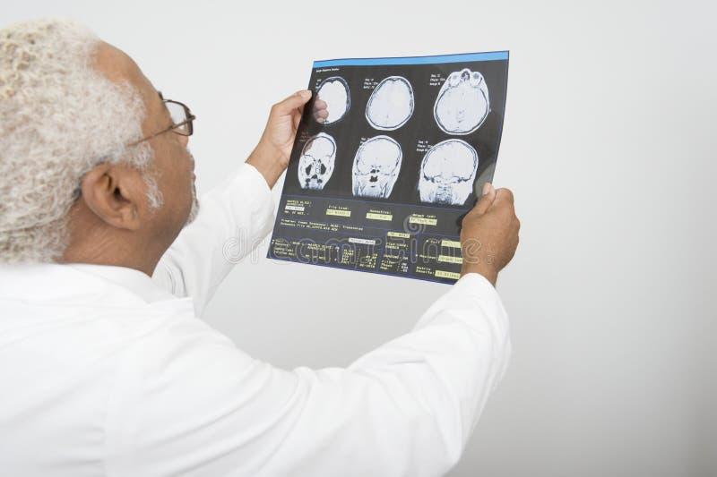 De Röntgenstraalrapport van artsenExamining in Kliniek royalty-vrije stock afbeeldingen