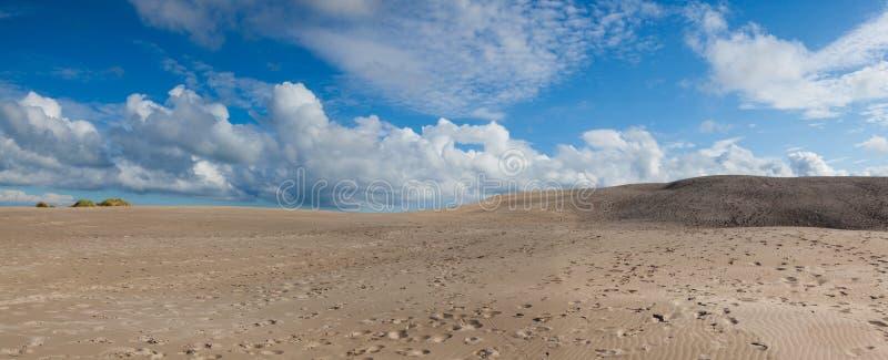 De Rabjergmijl is een migrerend kustduin, Denemarken stock fotografie