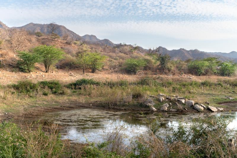 De Ranakpur-dam in India stock afbeelding