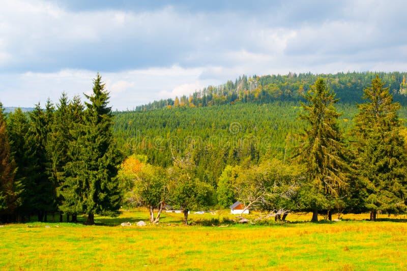 De rand van de Stozecberg met Stozec-Rots op de bovenkant Boslandschap van Sumava-Bergen, Tsjechische Republiek stock fotografie