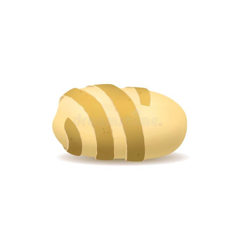 De realistische Gedetailleerde 3d Aardappel verdraaide Schil Vector royalty-vrije illustratie