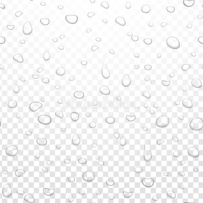 De realistische vectordalingen van de waterregen op alpha- transparante achtergrond Gecondenseerde zuivere druppeltjes Vector dui stock illustratie